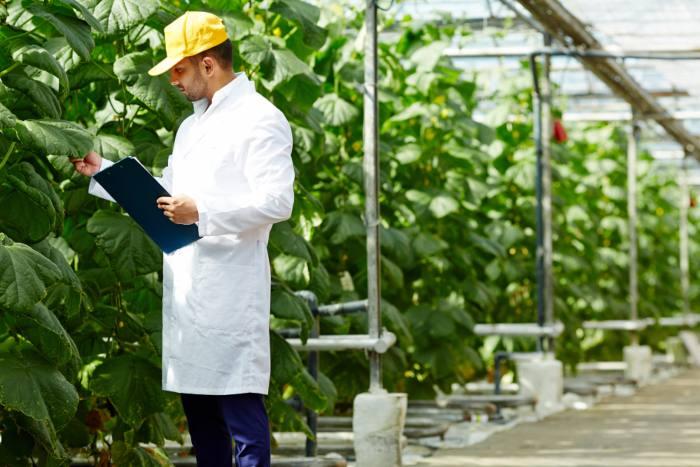 Seguridad-e-higiene-agrícultura